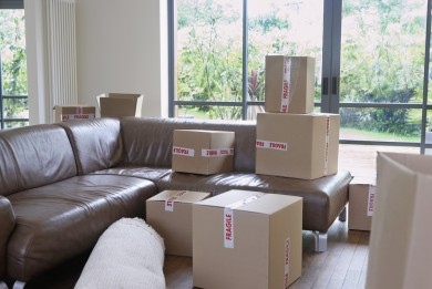 Image of moving box during a house move